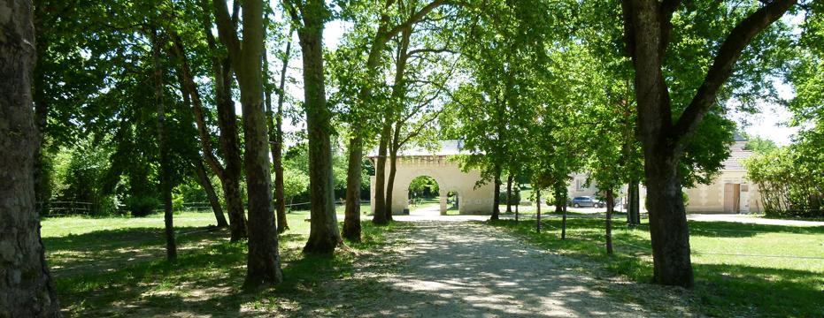 chateau-de-bellevue-5